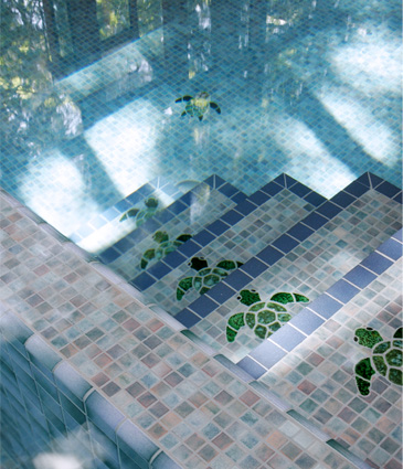 Close up of tiled pool with sea turtle mosiacs on stairs and floor of swimming pool
